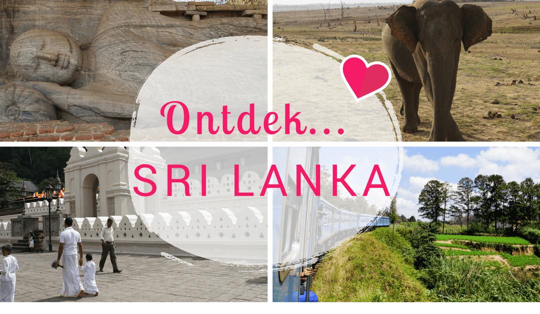Ontdek… Sri Lanka: Prachtige ruïnes, heerlijk eten en wilde olifanten!