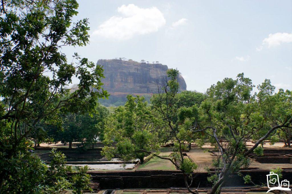 Sri Lanka Sigiriya Leeuwenrots