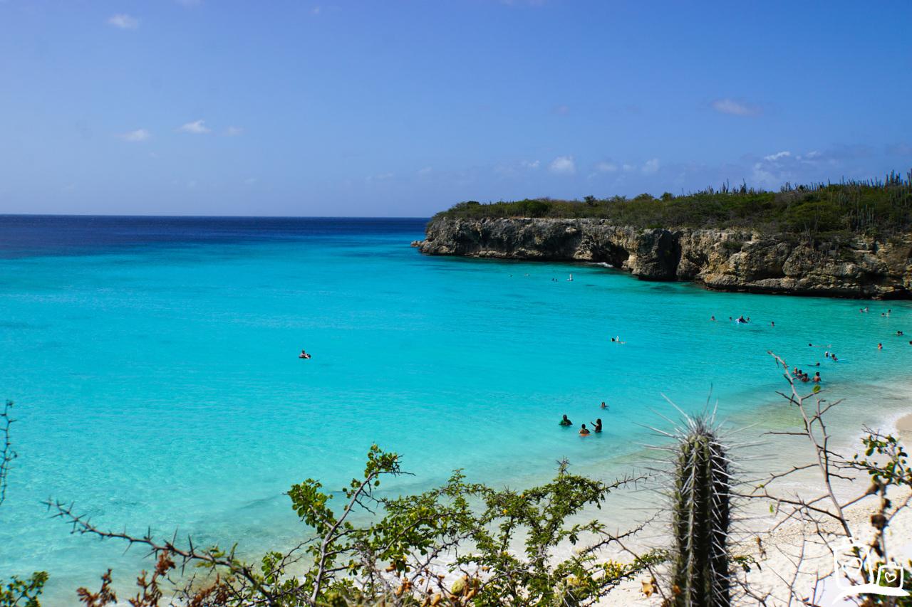 Curacao Playa Kenepa Grandi (Grote Knip)