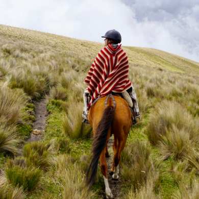 Ecuador Cotopaxi National Park Paardrijden