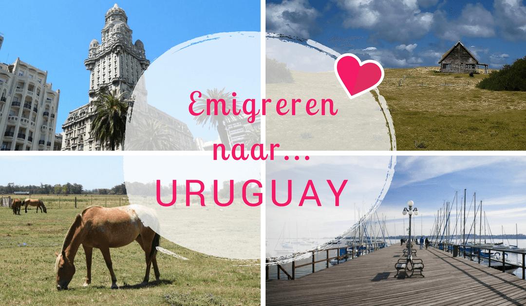 Emigreren naar Uruguay: Vol passie een steentje bijdragen aan de samenleving!