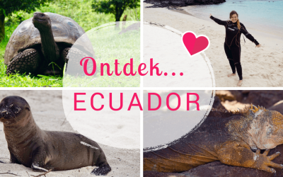Ecuador Blogserie – Deel 4: De geweldige Galapagos eilanden