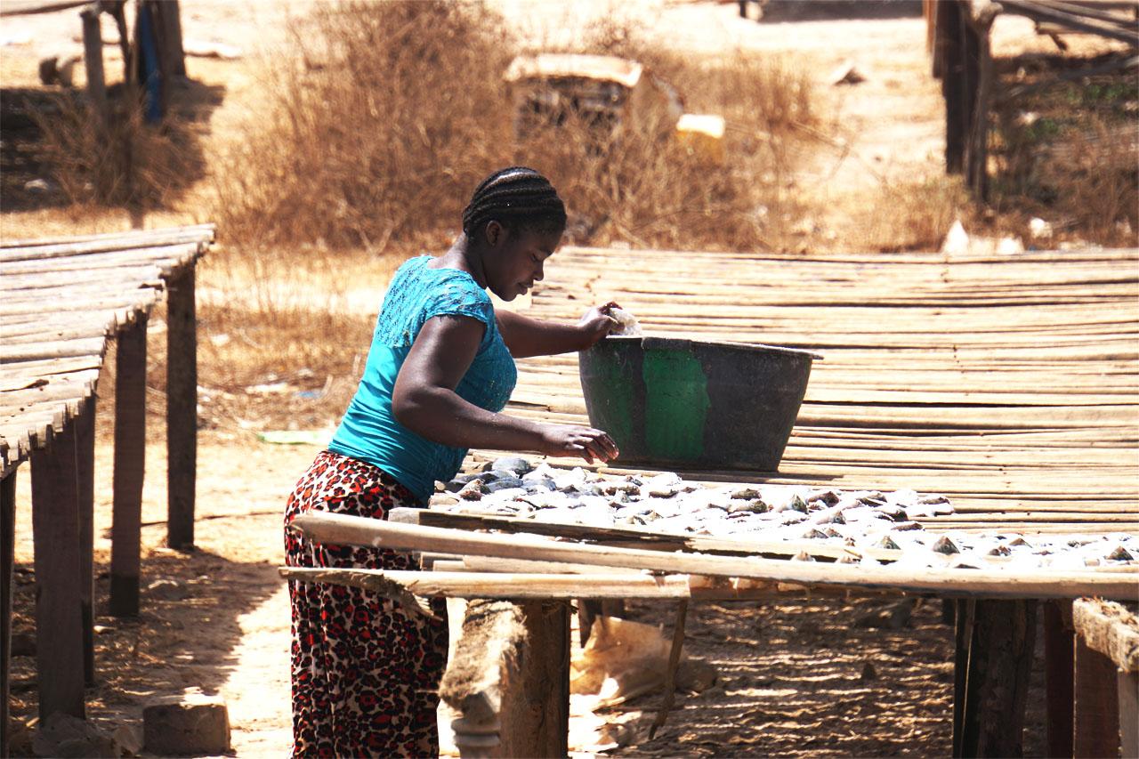Gambia - Vissersmarkt Ghanatown