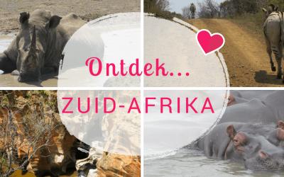 Ontdek… Zuid-Afrika: Genieten van de wilde dieren en de schitterende uitzichten!