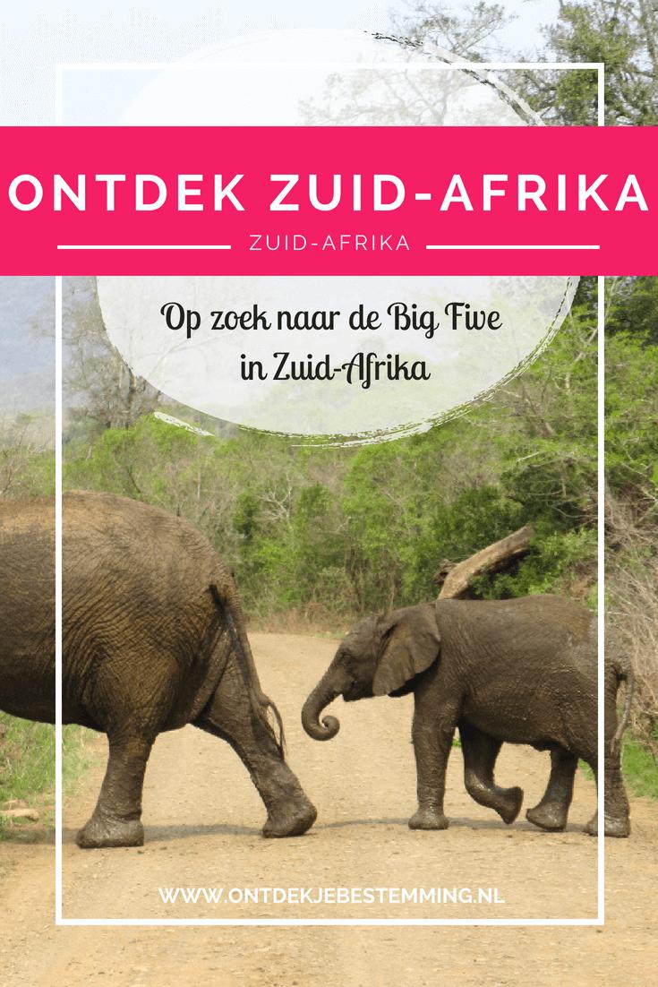 In Zuid-Afrika heb je behoorlijk wat natuurparken waar je safari's kunt maken. Maar welk park kies je dan?  In dit artikel vind je mijn 3 favoriete natuurparken voor het spotten van deze geweldige dieren!