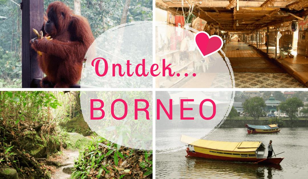Ontdek Borneo: Prachtige natuurgebieden en authentieke stammen!