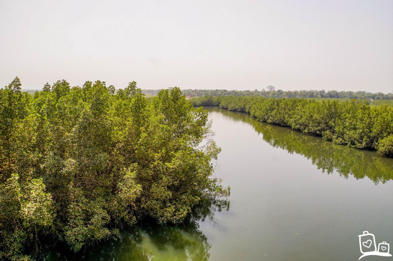Gambia Makasutu National Park