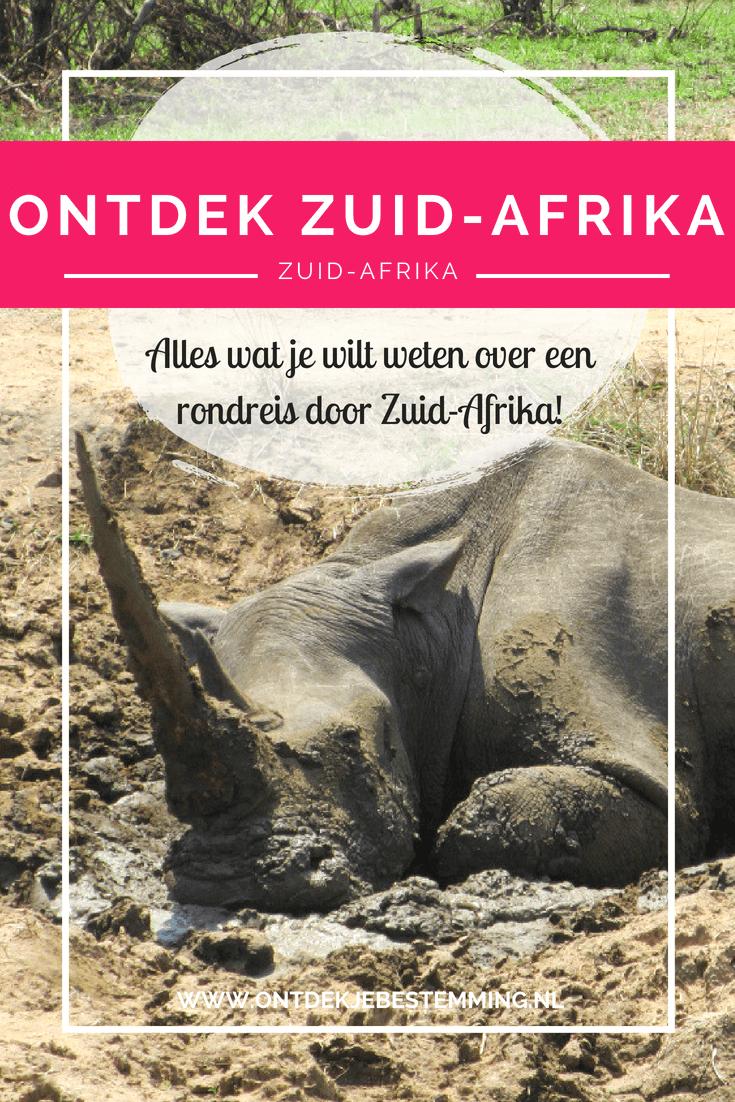 Zeg je safari, dan zeg je Zuid-Afrika! Waar kun je nu beter op zoek naar de big five (olifant, buffel, neushoorn, luipaard, leeuw)? Zuid-Afrika heeft daarnaast beeldschone natuur en wereldsteden om te bezoeken!