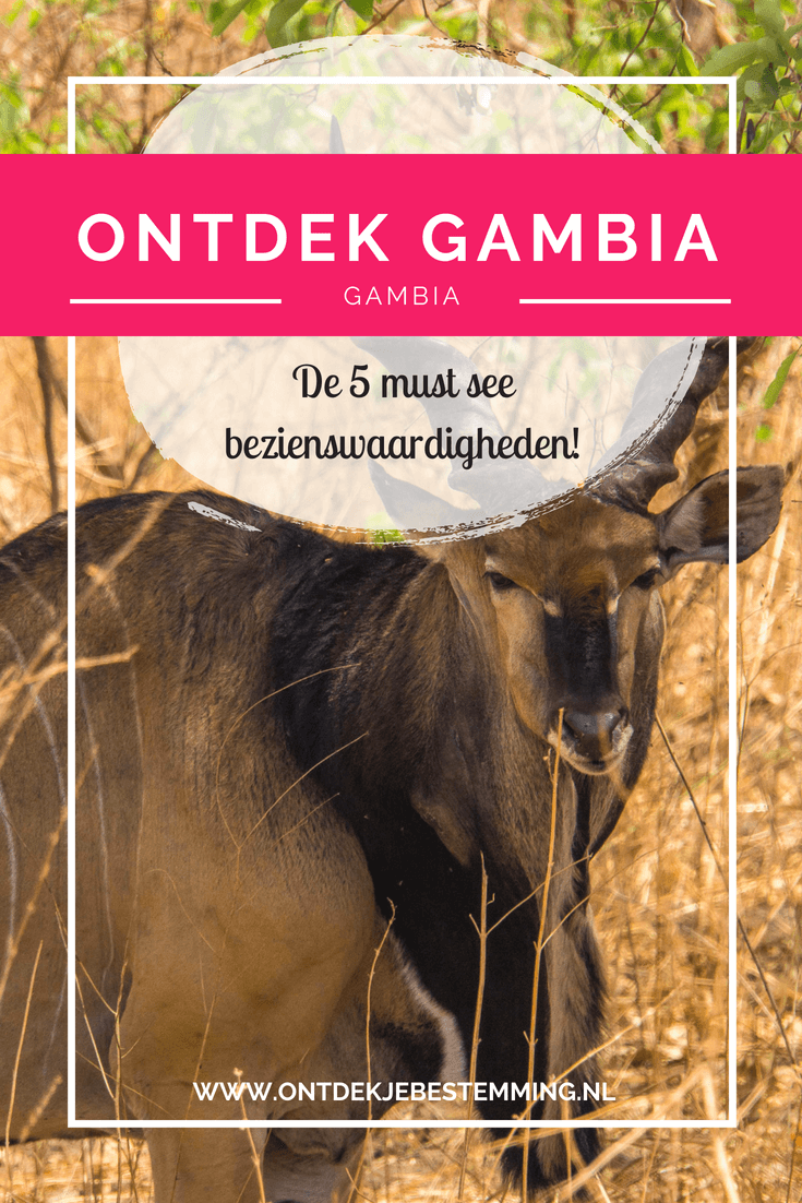 Ontdek... Gambia! De 5 must see bezienswaardigheden