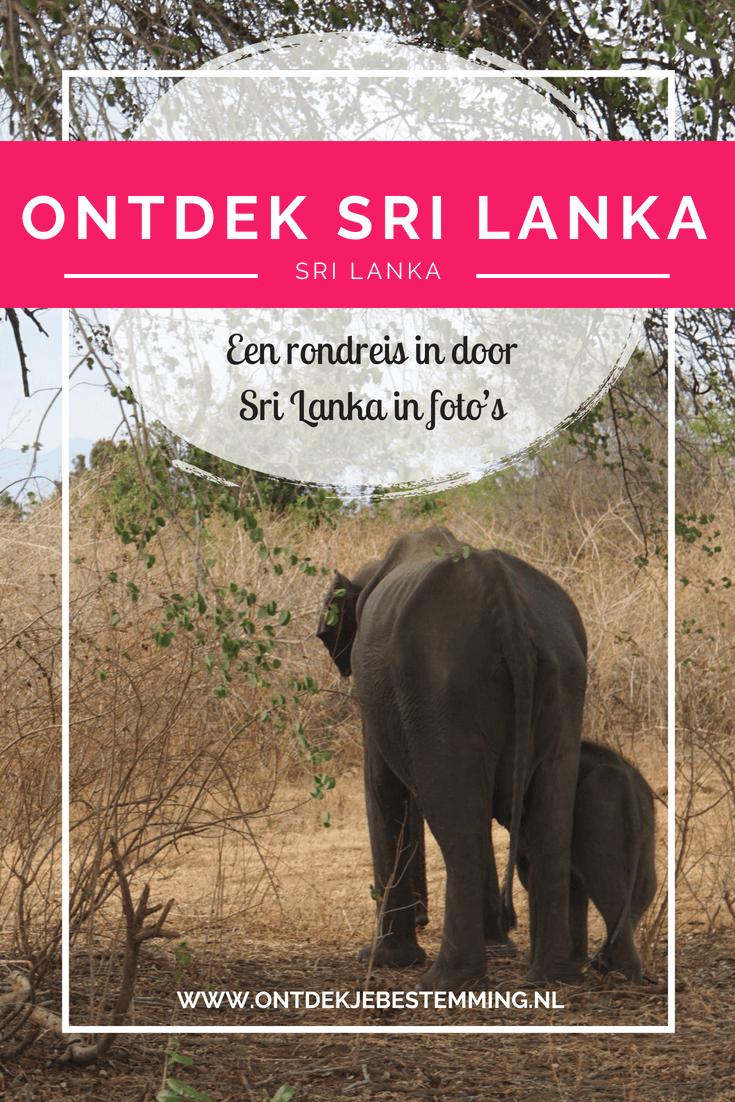 Sri Lanka is een geweldige en diverse bestemming. Van prachtige oude ruïnes en tempels tot aan safari's in geweldige natuurparken. Bekijk hier de foto's!
