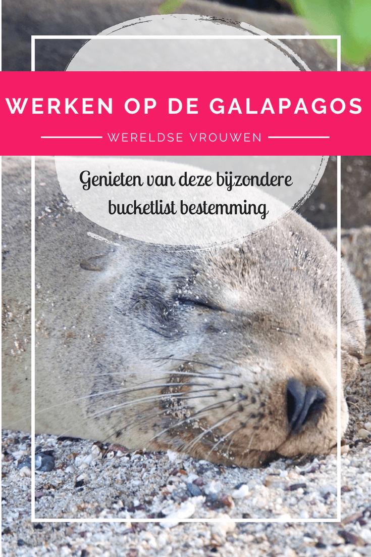 Werken op de Galapagos eilanden? Sandra doet het! Zij begeleid groepen toeristen en stelt prachtige droomreizen samen. Lees hier meer over haar avonturen!