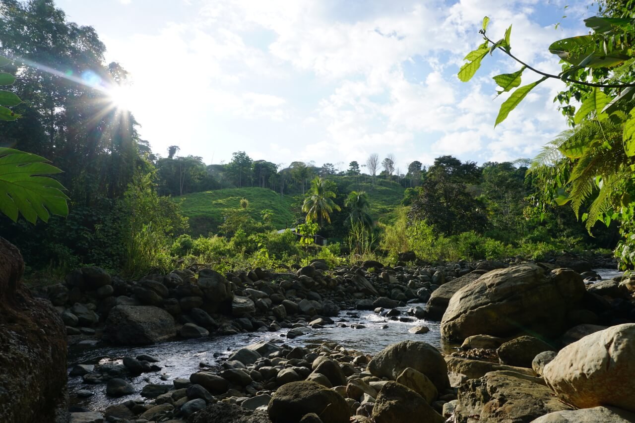 Anouk Veltmaat - Costa Rica - Dos Bocas