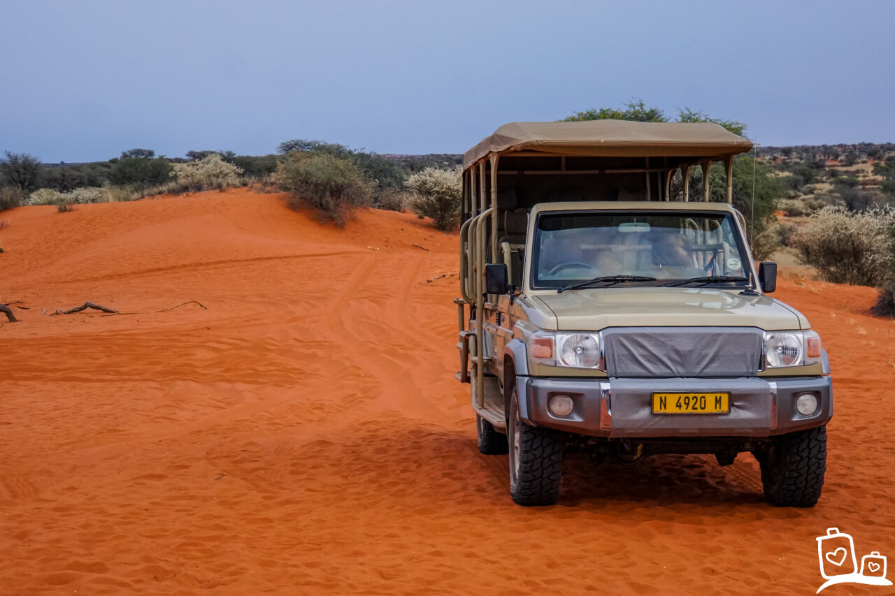 Namibie Kalahari woestijn Morning Game Drive