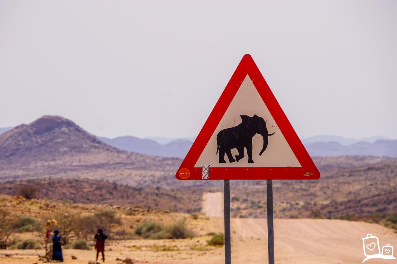 Onderweg Olifanten Damaraland