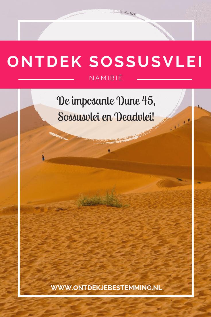 Het Namib-Naukluft National Park staat bekend om de Sossusvlei, Deadvlei en Dune 45. Lees in dit artikel waar je de mooiste roodkleurige zandduinen spot!