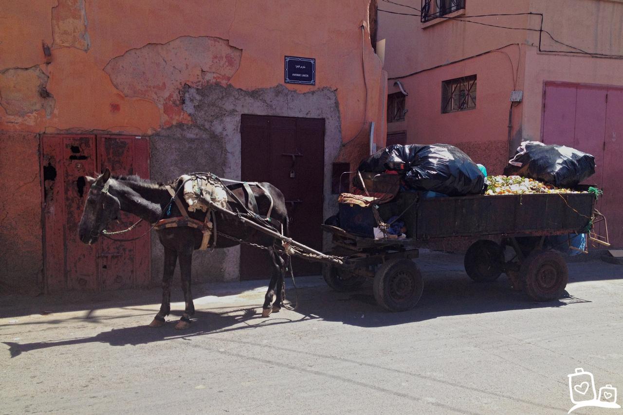 Marokko-Marrakech-medina